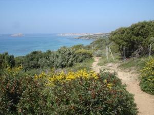 Sardinia, Italy | A Blue Zones Member