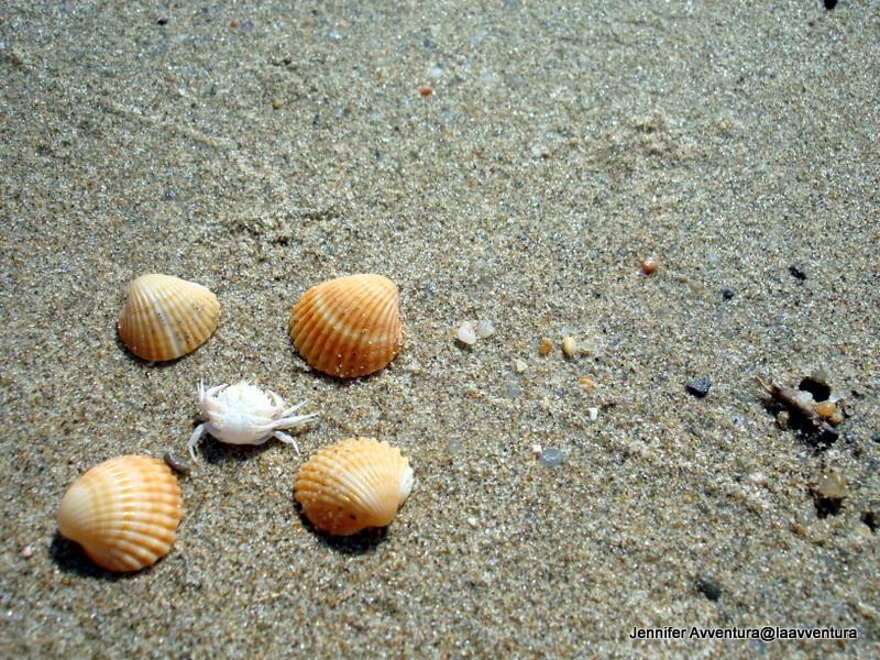 Weekly Photo Challenge: Summer in Sardinia (2/6)