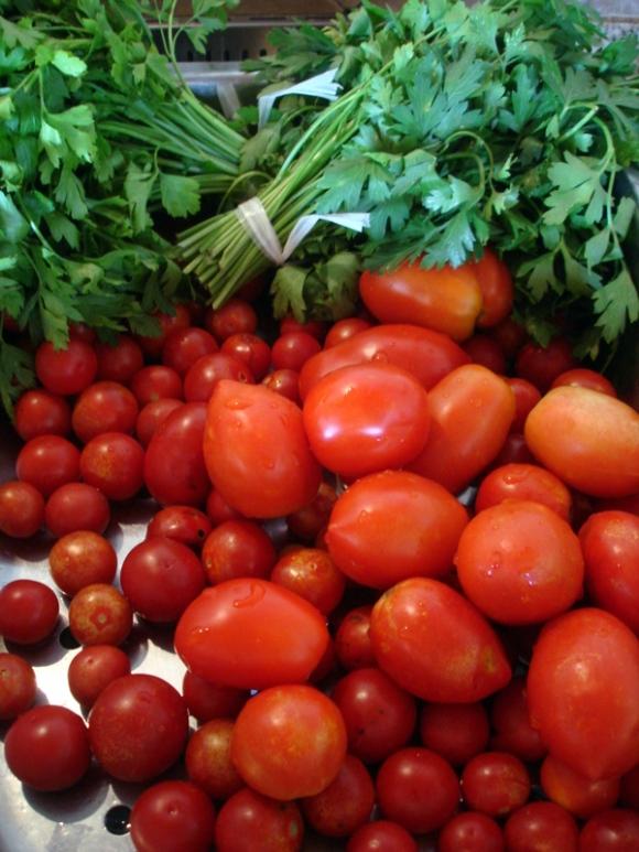 Freshly picked parsley & baby tomatoes