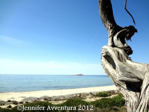 Li Feruli by Jennifer Avventura 2012 (5)