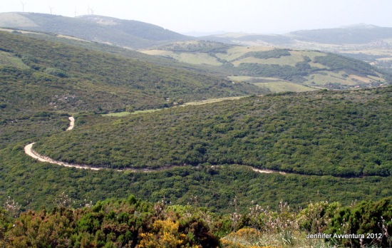 Jennifer Avventura My Sardinian Life (49)