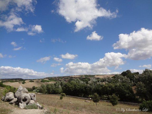 Petrified Forest of Carrucana Foresta fossile di Carrucana by Jennifer Avventura My Sardinian Life (7)