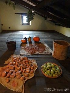 Toneri, Tonara by Jennifer Avventura My Sardinian Life (3)