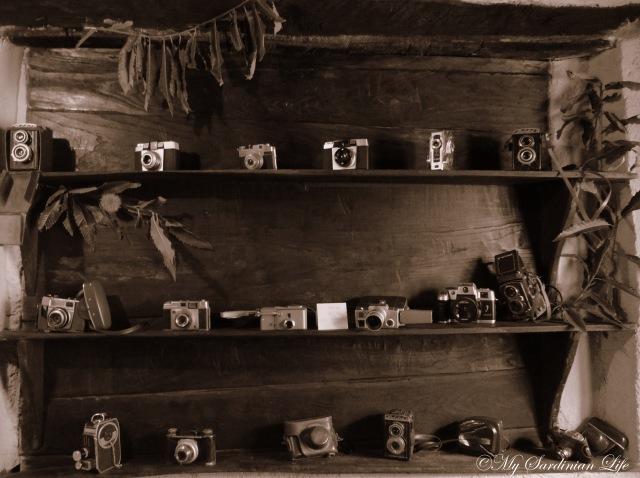 Camera photography by Jennifer Avventura My Sardinian Life