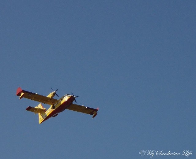 Canadair flying the friendly blue sky