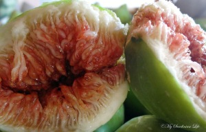 Fig porn by Jennifer Avventura My Sardinian Life