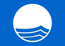 2000px-Blue_Flag_Logo.svg